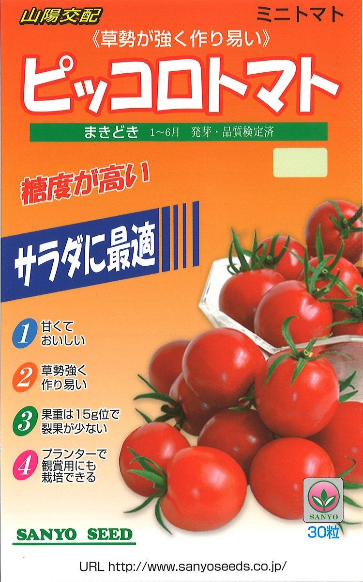 kouhai tomato piccoro