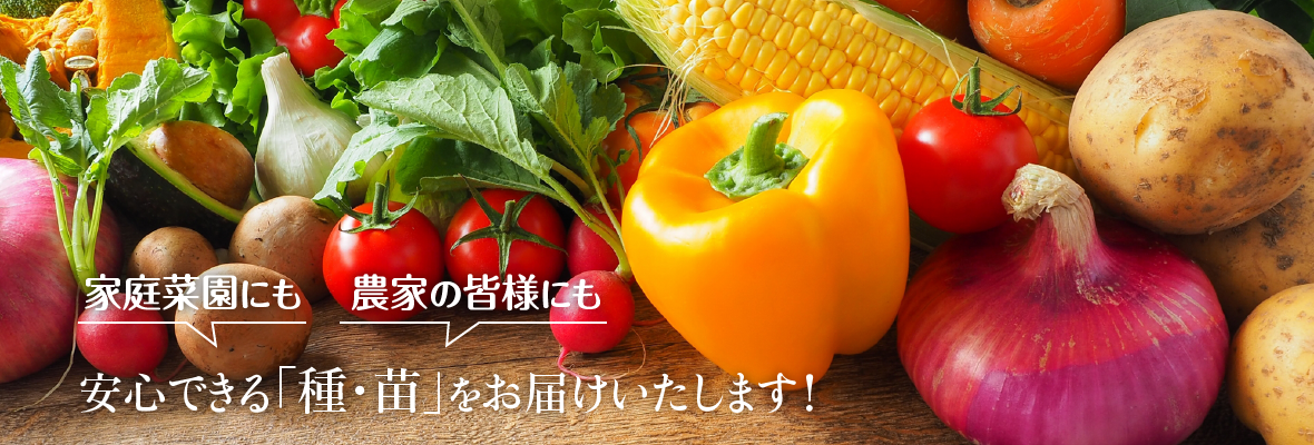 家庭菜園にも、農家の皆様にも!安心できる「種・苗」をお届けいたします!